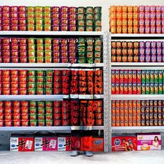 supermarket_1766214i.jpg (JPEG Image, 620×620 pixels) #bolin #camouflage #liu #chameleon #supermarket #photography #real #invisible #life