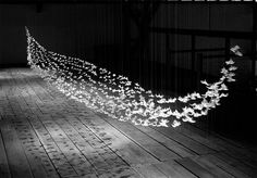 Suspended Feather Installations by Isa Barbier #airplane #installation #paper