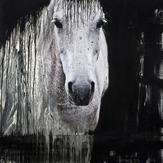 Andre Petterson #horse #painting