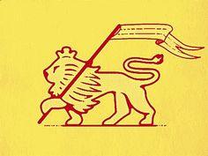 Lion #lion