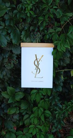 YSL_3 #ysl #fashion #high fashion #print #gold #gold foil #style