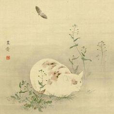 5   Internet, Meet The Cats Of 19th Century Japan   Co.Design   business + design