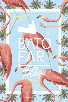 appelle moi papa | GRAPHIC DESIGN #layout #nature #flamingos #poster