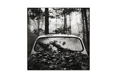 Jib Peter - Auteur Photographe - Saone Et Loire #car