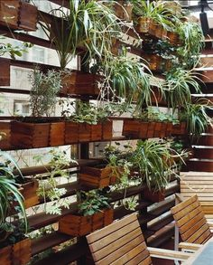 zizmor-house-exterior-plant-wall.jpg (JPEG Image, 645 × 801 pixels) #courtyards #plants #storage #architecture #landscapes #green