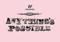Houdini | Identity Designed