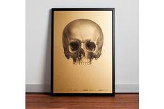 1i.jpg #gold #print #poster #skull