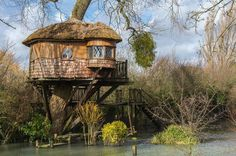 Treehouse In Amberley, Uk #treehouse