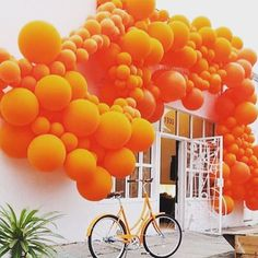 Orange balloons, white wall, street shop entrance, orange bike