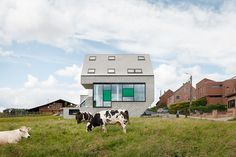 Energy Efficient Leeuw House In Belgium Adapted To Its Countryside Landscape