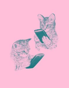 kittens texting #phone #pink #cat #smart #kittens