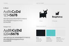 Bosphorus identity #logo #branding #bull