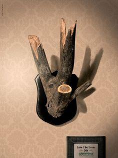 Greenpeace - Спасите деревья. #greenpeace