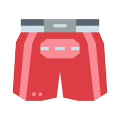 See more icon inspiration related to sports and competition, boxing shorts, boxing, fighting, clothing, fight, shorts, fashion and clothes on Flaticon.