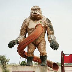 f57cA7LtxCyG0q4d7Qk26tDV.png (497×497) #vintage #photography #slide #playground #gorilla