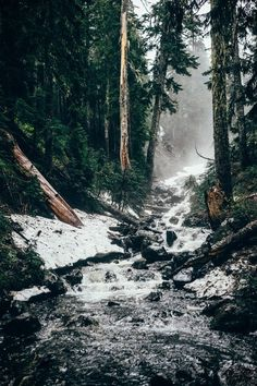 Likes | Tumblr #nature