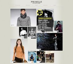 Pringle_comped_forWedsite.jpg 800×700 pixels #website #web design