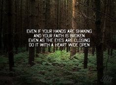 John Mayer #quote #photo #brown #forest #green