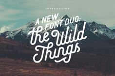 The Wild Things Typeface #calligraphy #cursive #font #handmade #hipster #lettering #letters #script #type #typeface #typography
