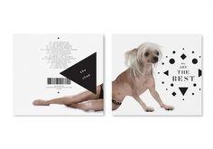 080112_4.jpg (JPEG Image, 1000×700 pixels) #packaging #art