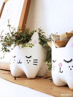 DIY : Kitty planters from plastic bottles #shop #bottles #kitty #window #plastic #decoration