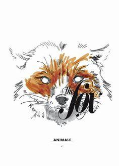 THE FOX // #flevo #rosco #fox #design #graphic #digital #illustration #colors #poster #animal #typography