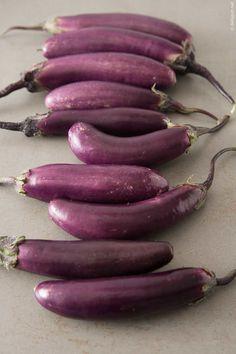 Chinese long aubergines Auberginen, Sorte Chinese long #food #foodphotography #foodphotographer #cooking #eating