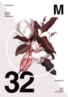 Poster by Xavier Esclusa M32 / Collection