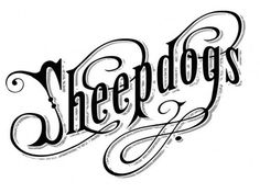 Typography / type #type #sheepdogs