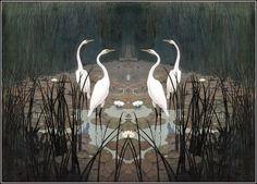 01_wyeth_heronsinsummer_01.jpg (1247×896) #swans