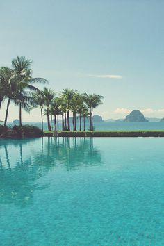 bluish #palm #tropical #pool #island #summer #trees