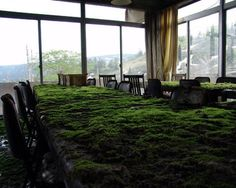 FFFFOUND! | Where is my mind? #in #office #grass