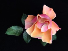 Fascinated iPhone Photos of Flowers by Barbara Nebel