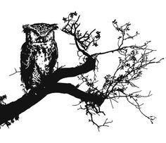 pixelkrieger #vektor #owl