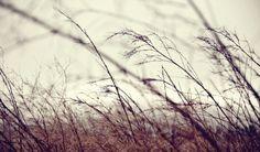 MEW / PHOTOGRAPHY #designerwithacamera #photography #landscape