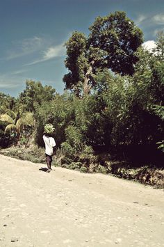 Photographic Inspiration on the Behance Network #haiti #sun #banana #road #bananas #island #hot #photography #summer #trees #caribbean