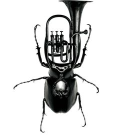 Paristexas #logo #identity #bug #instrument #paristexas