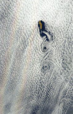 Science Llama   These images from Earth Observatory show islands creating vortices