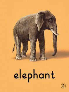 elephant Art Print by Ladybird Books Easyart.com #print #design #retro #artprints #vintage #art #bookcover