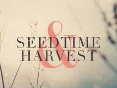 Seedtime & Harvest #logo
