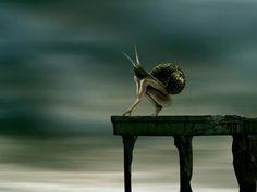 Helena Georgiou surreal photography #inpiration #surreal #photography