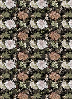 Blomster inineumann #neumann #pattern #germany #wraping #hair #illustration #hamburg #ini #paper #flowers