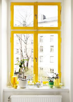 sunny yellow window sill