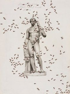 bookmark ( insect series ) by Vittorio Ciccarelli #sculpture #vittorio #illustration #art #man #ciccarelli #ants