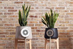 Clairy is the first #natural air #purifier powered by plants! This system combines smart #technology, #design and nature to keep #indoor air