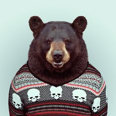 Yago Partal: Zoo Portraits #photography #zoo #art #portrait