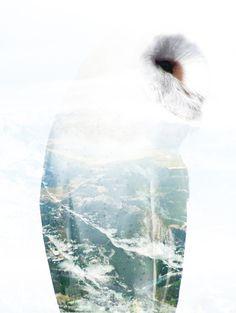 Behance :: Editing Digital Illustrations #alpine #owl #graphic #digital #illustration #nature #mountains