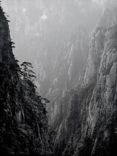 Huangshan Ltd on Photography Served #inspiration #photography #photographer #landscape