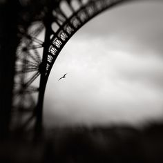 Les dessous de la Dame, photography by Xavier Rey #lensbaby