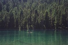All sizes | Untitled | Flickr - Photo Sharing! #nature #photography #film #lake #trees